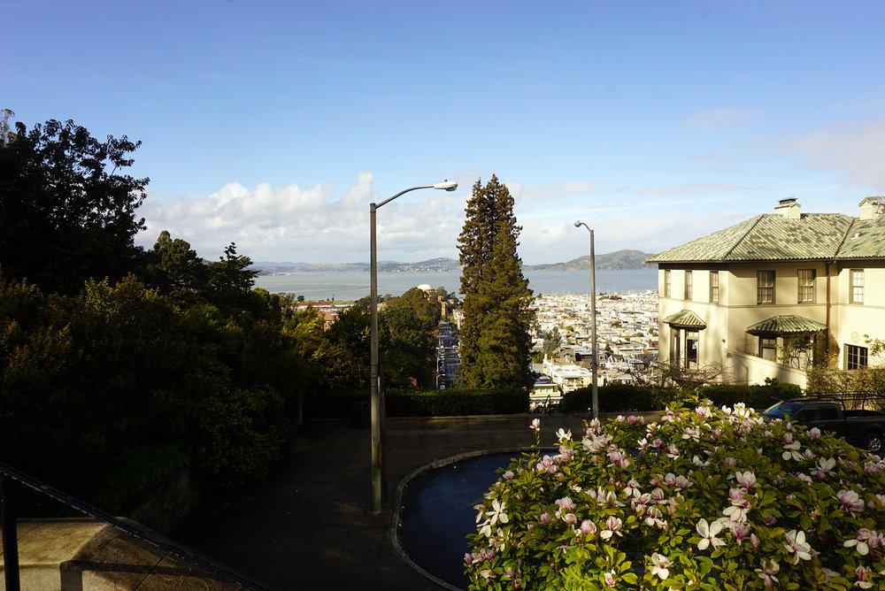 Lyon-Street-San-Francisco-California-Travel-LINDATENCHITRAN-2-1616X1080.jpg