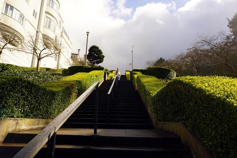 Lyon-Street-San-Francisco-California-Travel-LINDATENCHITRAN-1-1616X1080.jpg