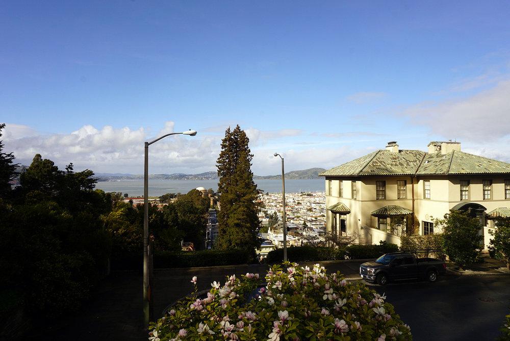 Lyon-Street-San-Francisco-California-Travel-LINDATENCHITRAN-3-1616X1080.jpg