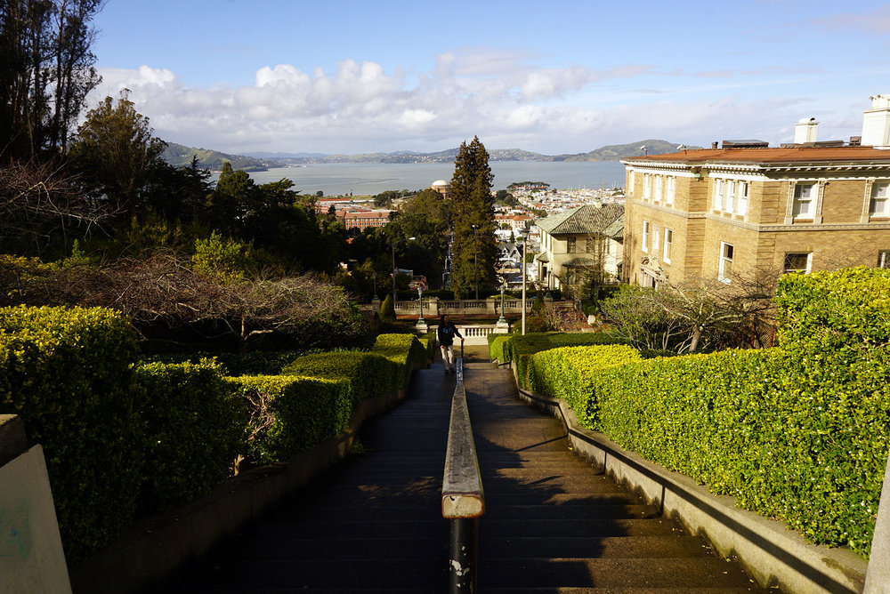 Lyon-Street-San-Francisco-California-Travel-LINDATENCHITRAN-5-1616X1080.jpg