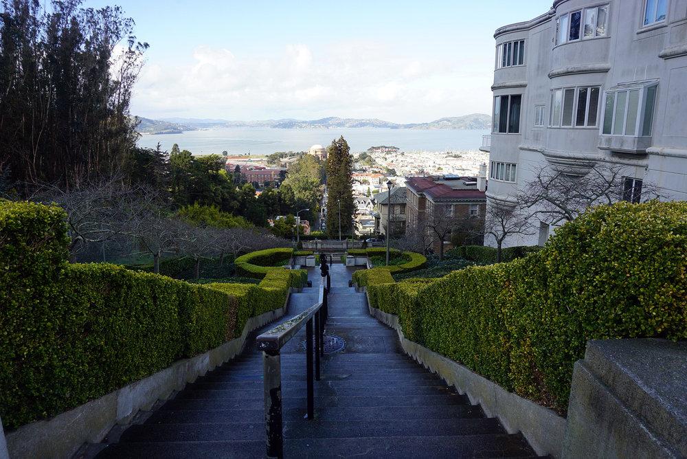 Lyon-Street-San-Francisco-California-Travel-LINDATENCHITRAN-6-1616X1080.jpg