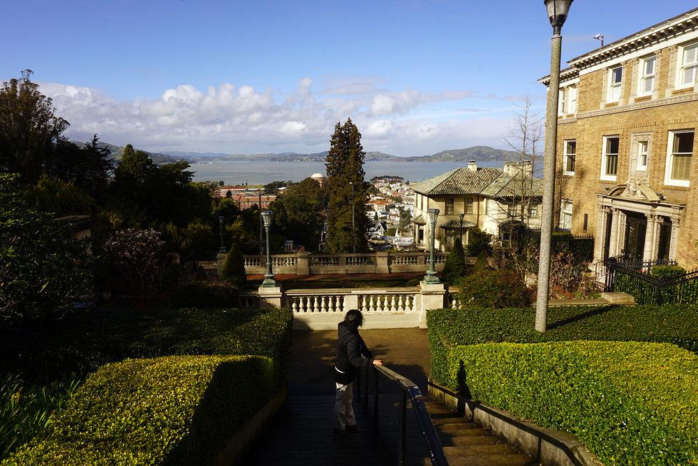 Lyon-Street-San-Francisco-California-Travel-LINDATENCHITRAN-4-1616X1080.jpg
