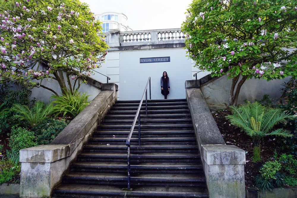 Lyon-Street-San-Francisco-California-Travel-LINDATENCHITRAN-14-1616X1080.jpg
