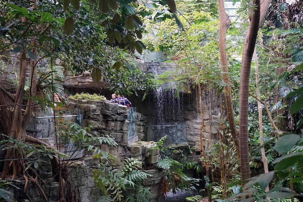 Montreal-Biodome-Canada-Olympic-Park-Traveller-Travel-Blogger-LINDATENCHITRAN-16-1616x1080.jpg