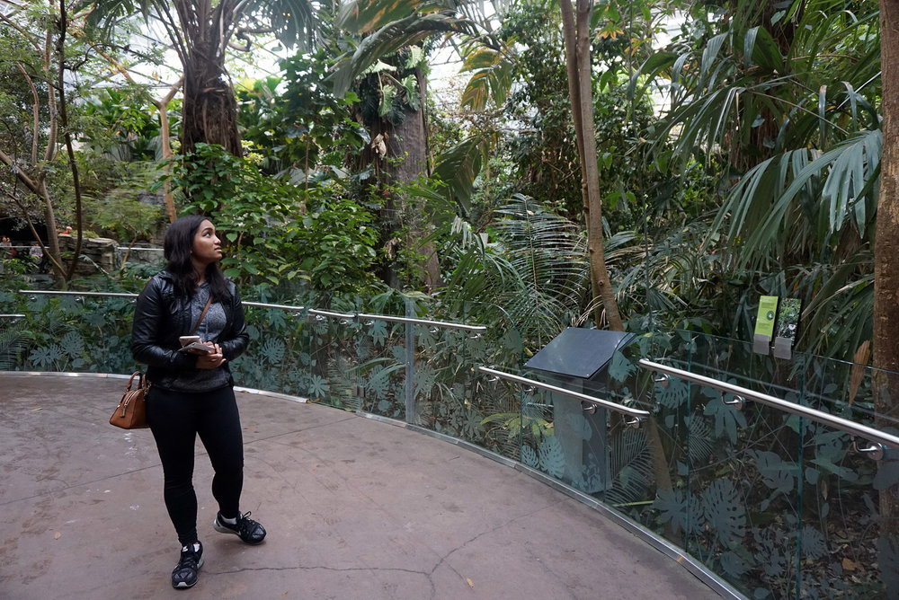 Montreal-Biodome-Canada-Olympic-Park-Traveller-Travel-Blogger-LINDATENCHITRAN-20-1616x1080.jpg