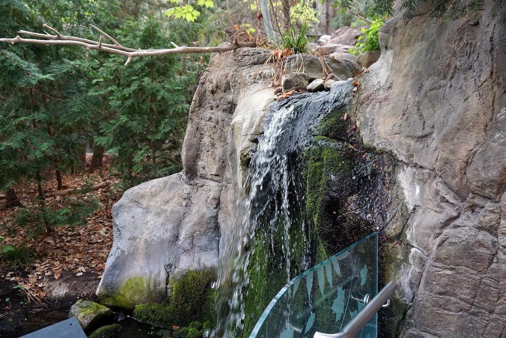 Montreal-Biodome-Canada-Olympic-Park-Traveller-Travel-Blogger-LINDATENCHITRAN-24-1616x1080.jpg