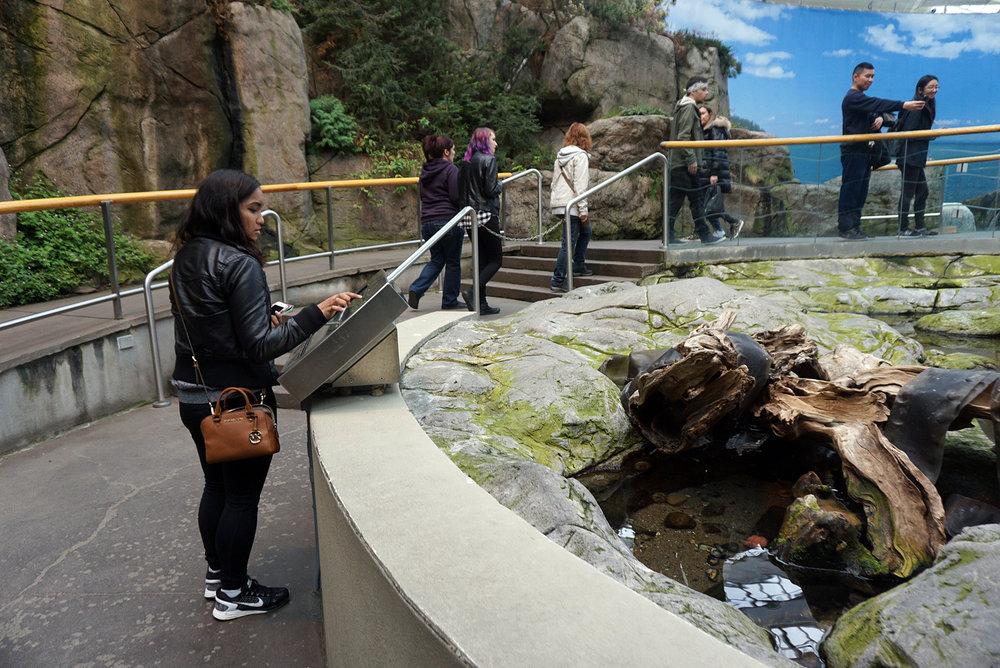 Montreal-Biodome-Canada-Olympic-Park-Traveller-Travel-Blogger-LINDATENCHITRAN-30-1616x1080.jpg