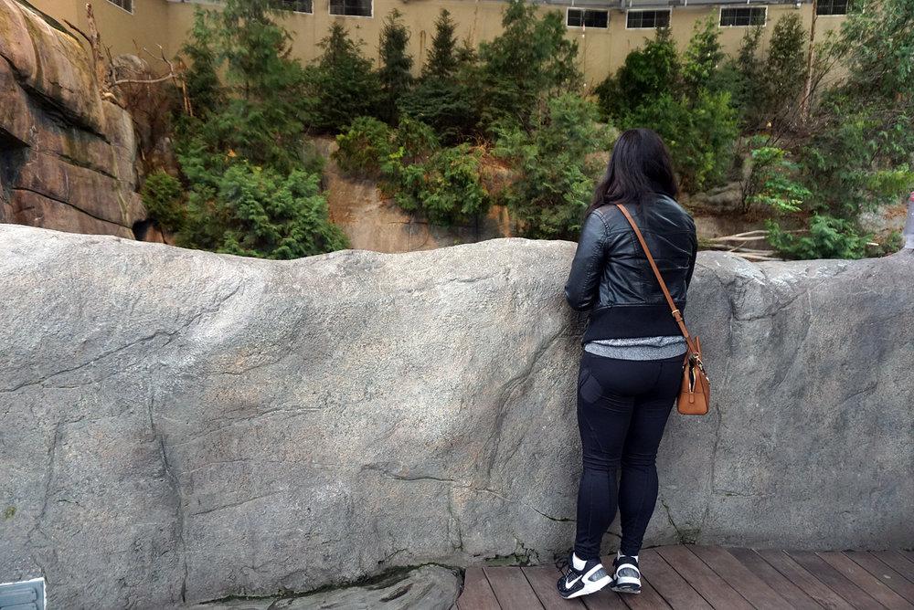Montreal-Biodome-Canada-Olympic-Park-Traveller-Travel-Blogger-LINDATENCHITRAN-32-1616x1080.jpg