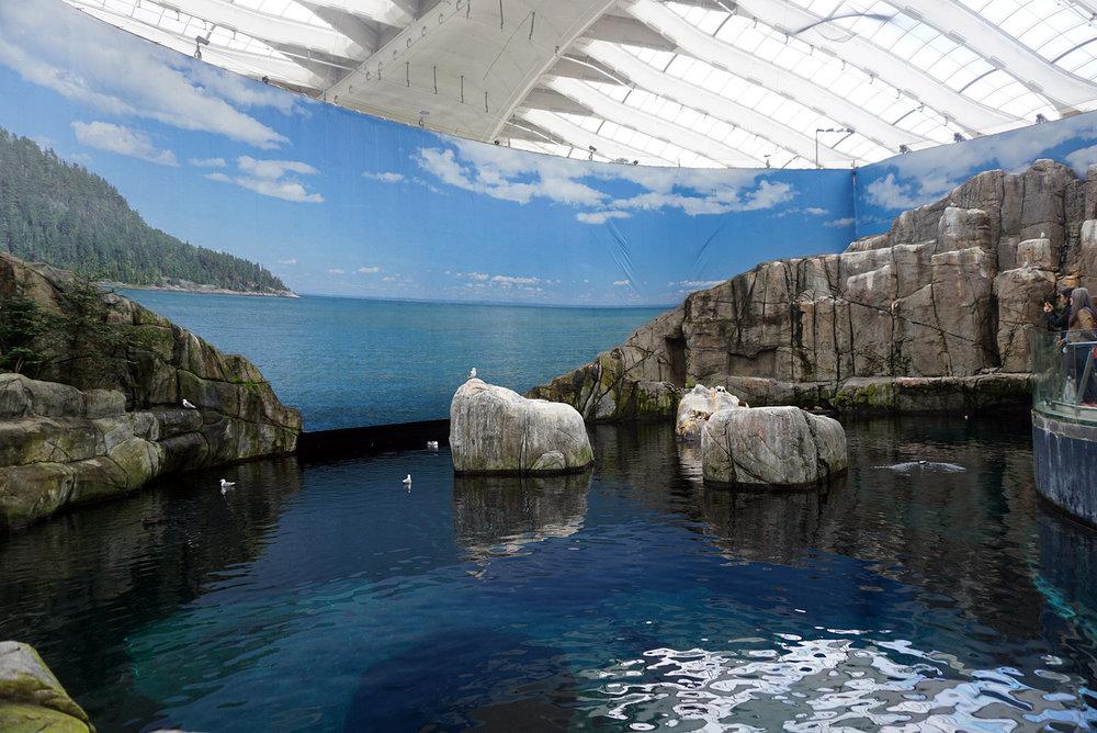 Montreal-Biodome-Canada-Olympic-Park-Traveller-Travel-Blogger-LINDATENCHITRAN-31-1616x1080.jpg