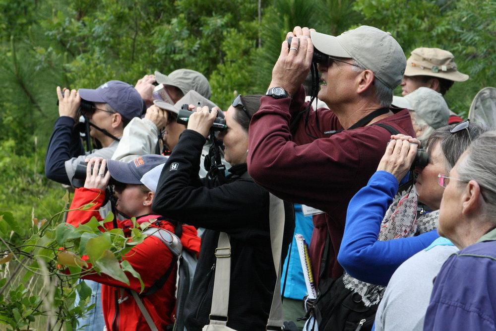 Birding Group.jpg