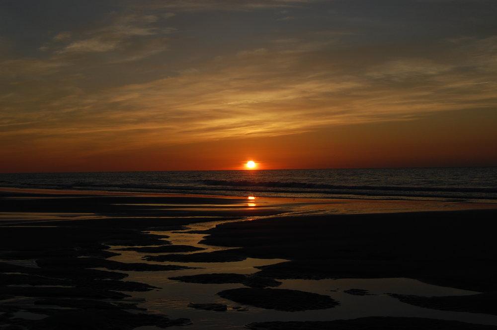 Sunrise on the Beach by Michele Fyles.jpg