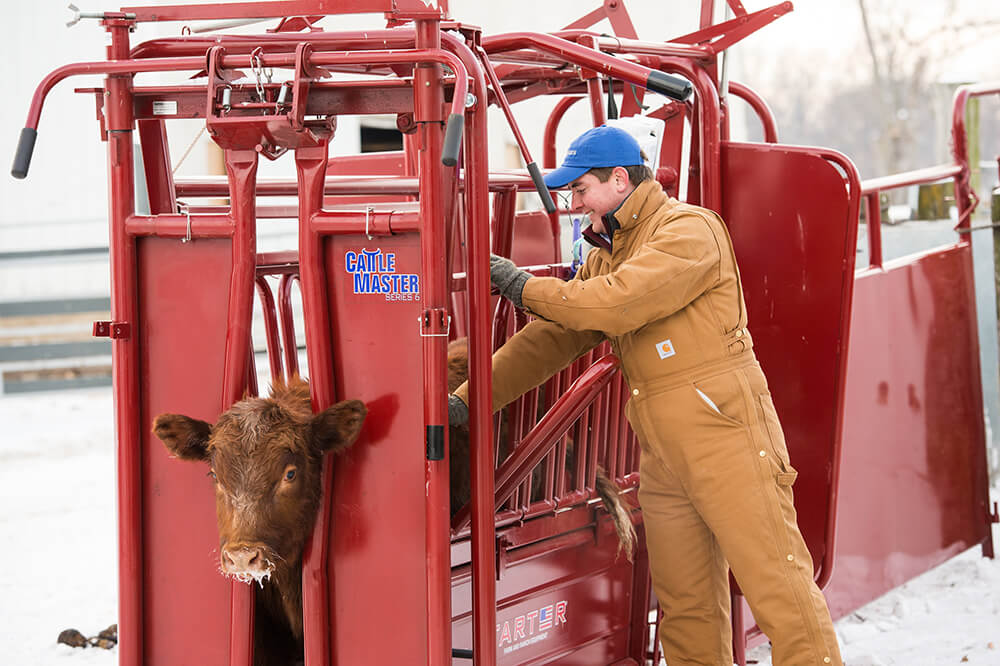 Drop down side access panels great for deworming and branding