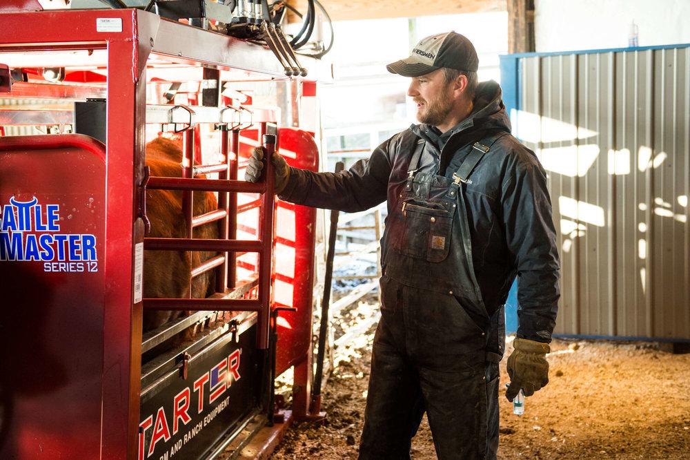 Cattle Handeling-3416-2.jpg