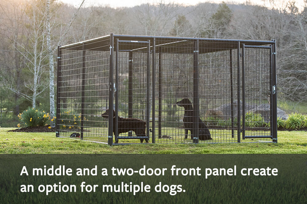 Elite Dog Kennel Tarter Farm And Ranch Equipment