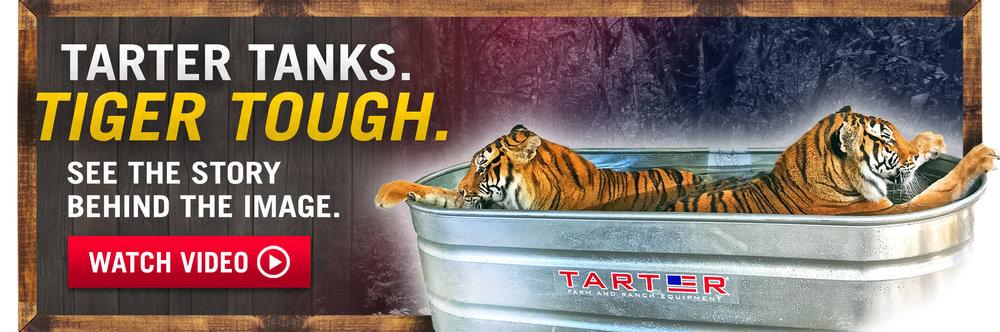 tarter tigers (1).jpg
