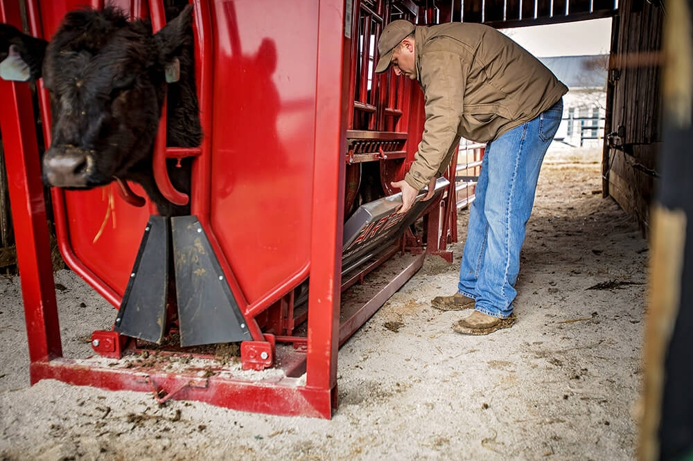 Removable bottom panel allows safe access to lower half of livestock.