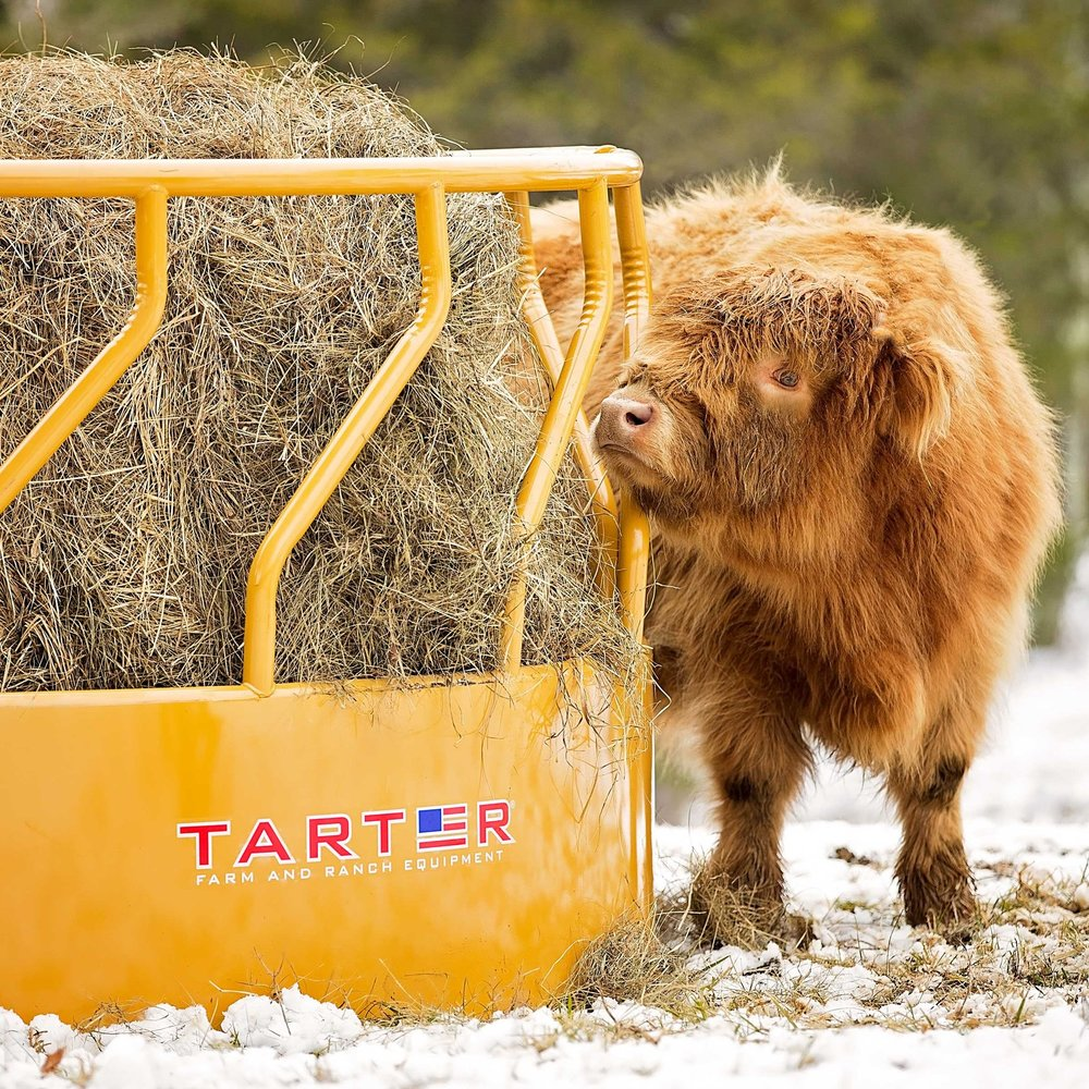 Cattle Feeders -