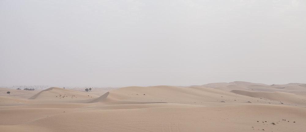 Desert_Dubai_MG_7997.jpg