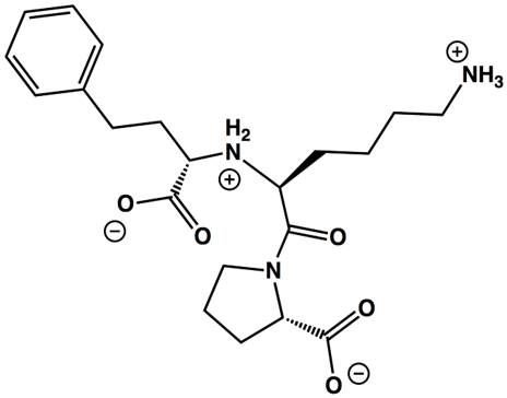 C4X-lisinopril-2d-chemistry-vr-project.png