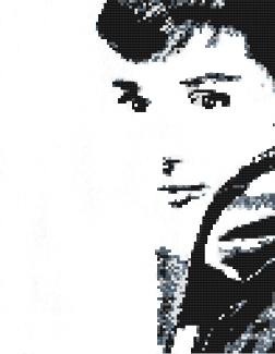 """Audrey"" - BLWTAD1312 13 Mesh 9 x 13"