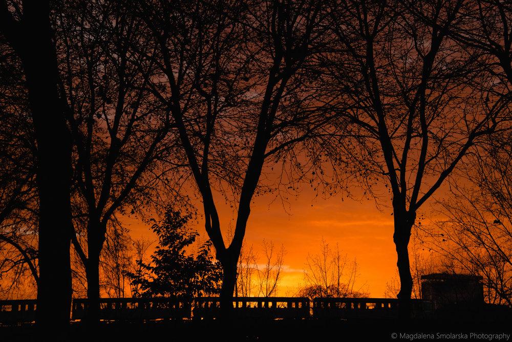 London & Brighton Portrait Photographer- Amazing red sunset in Paris