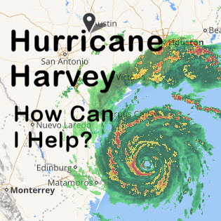 Harvey, Text, 300x300.jpg