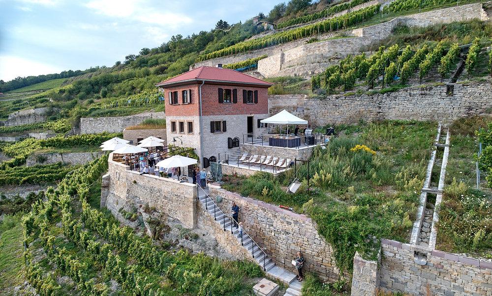 Weinfrühling am 01.Mai 2019 - Geöffnet ab 11 Uhr