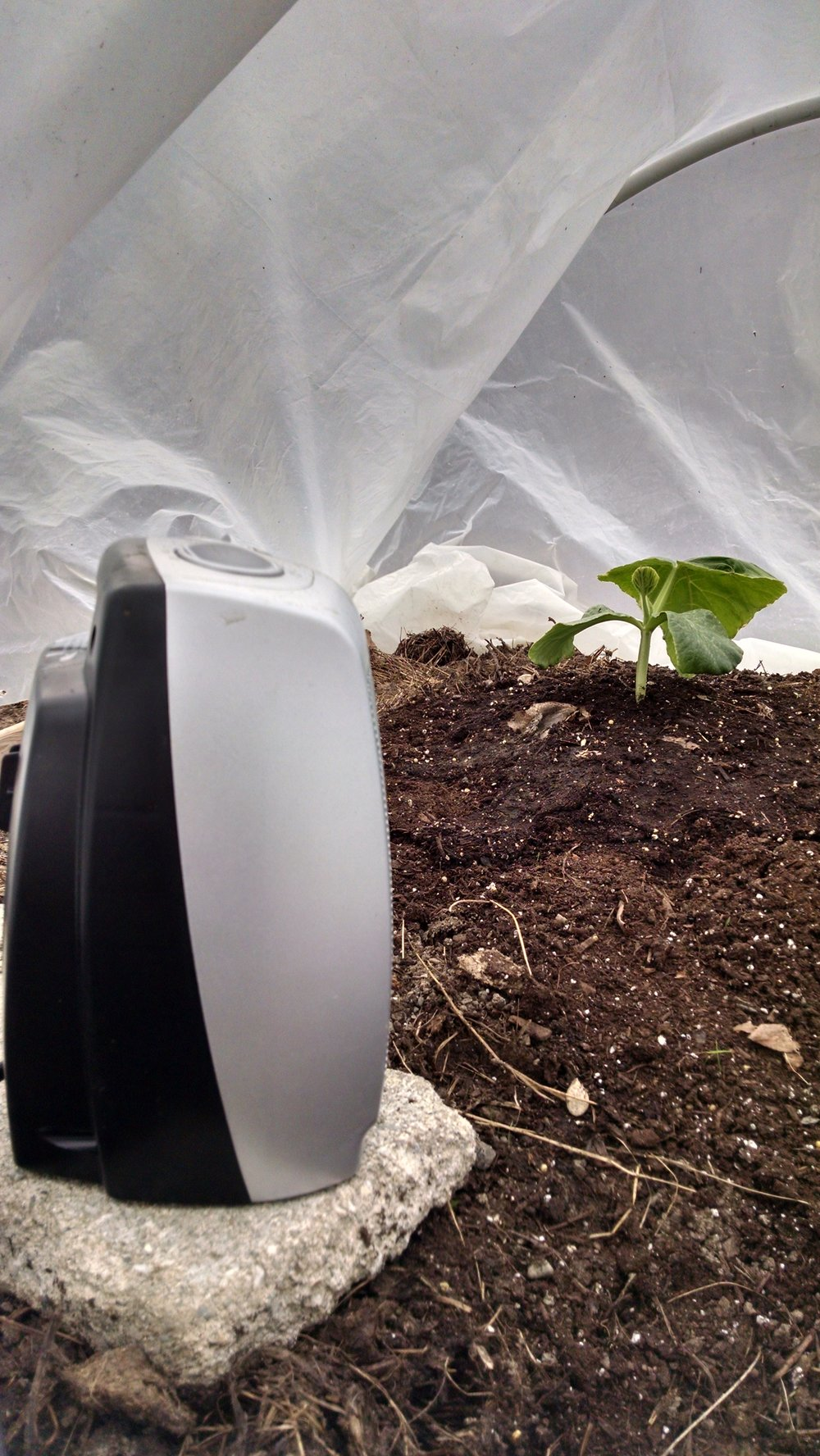 My setup inside the hoop house with a heater
