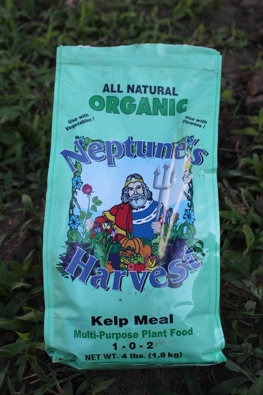 Neptune's Harvest kelp meal