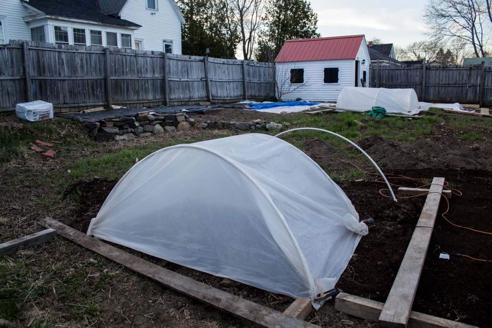 Hoop houses and compaction boards. The plastic along the back fence is to suppress weed growth where I'll be placing raised beds for our food garden. The dirt piles between the two hoop houses are from a raised bed out front that had lead in the soil. The dirt had manure and compost in it from last year, so I added it to the pumpkin patch (I just haven't made it look pretty yet!).