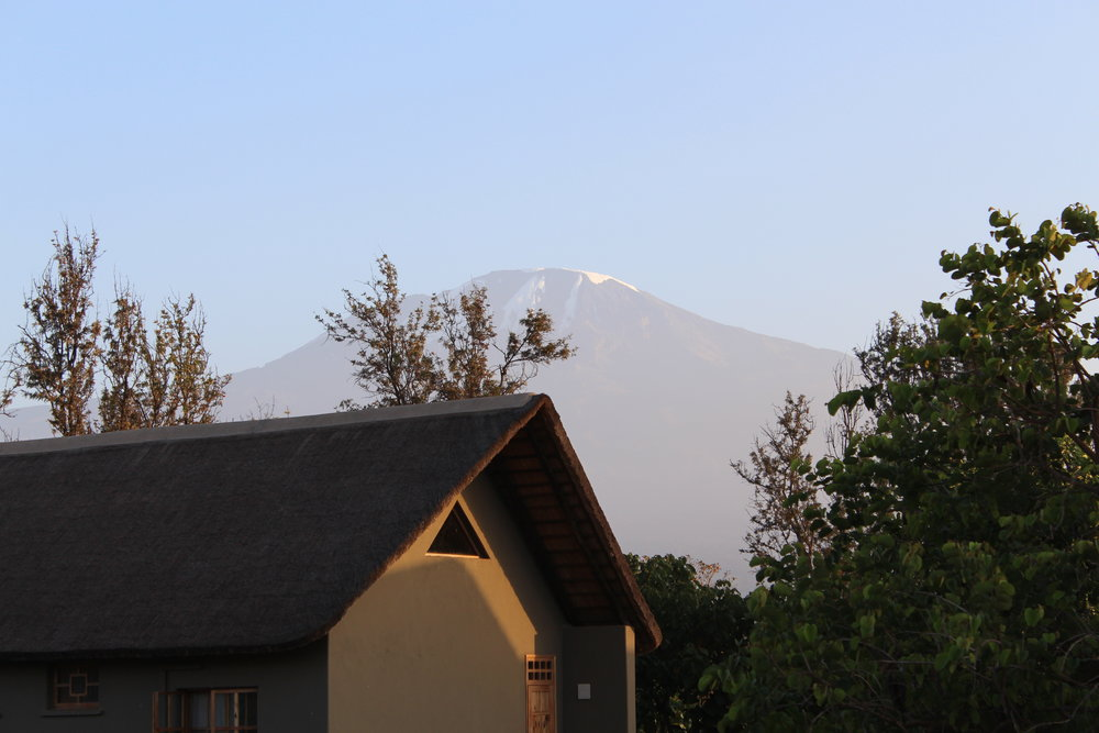 View of Mount Kilimanjaro from Weru Weru River Lodge.