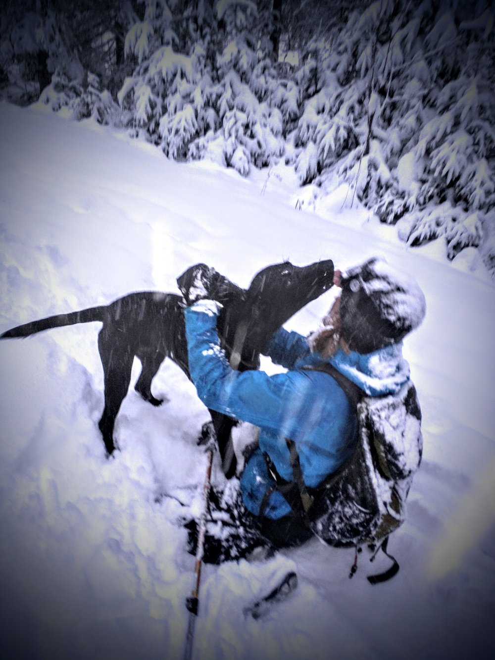 Doggie kisses in the snow.
