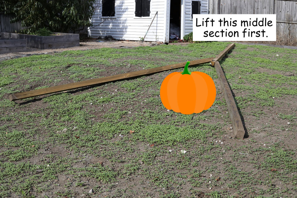 I made this diagram to show the proper placement of the tripod in relation to the pumpkin.