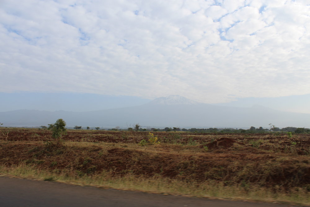 Kilimanjaro from the road.