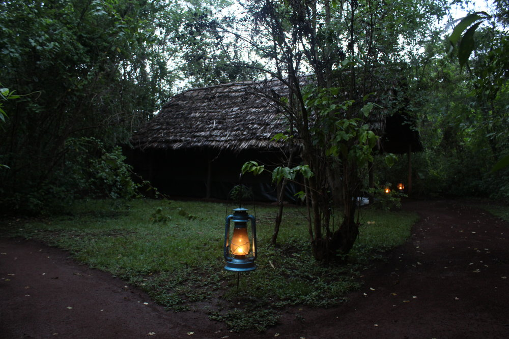 Our tent at Karatu Forest Tented Camp