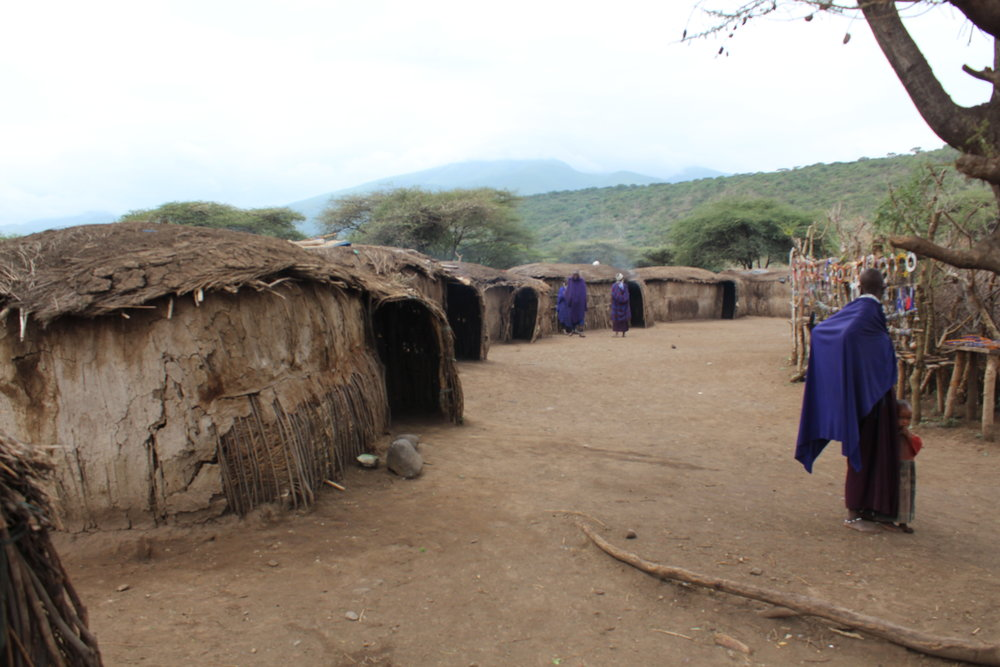 Massai village huts