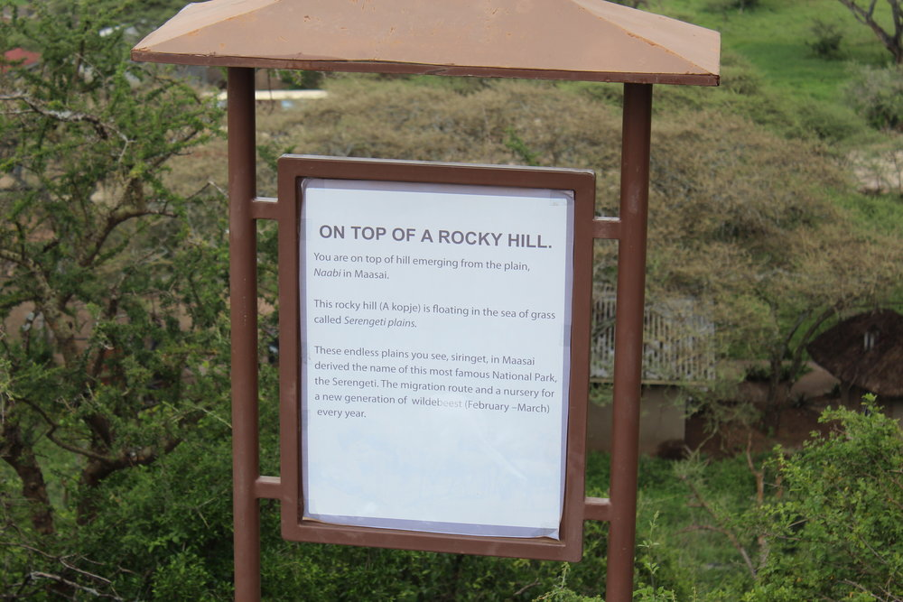 """On Top of a Rocky Hill"""