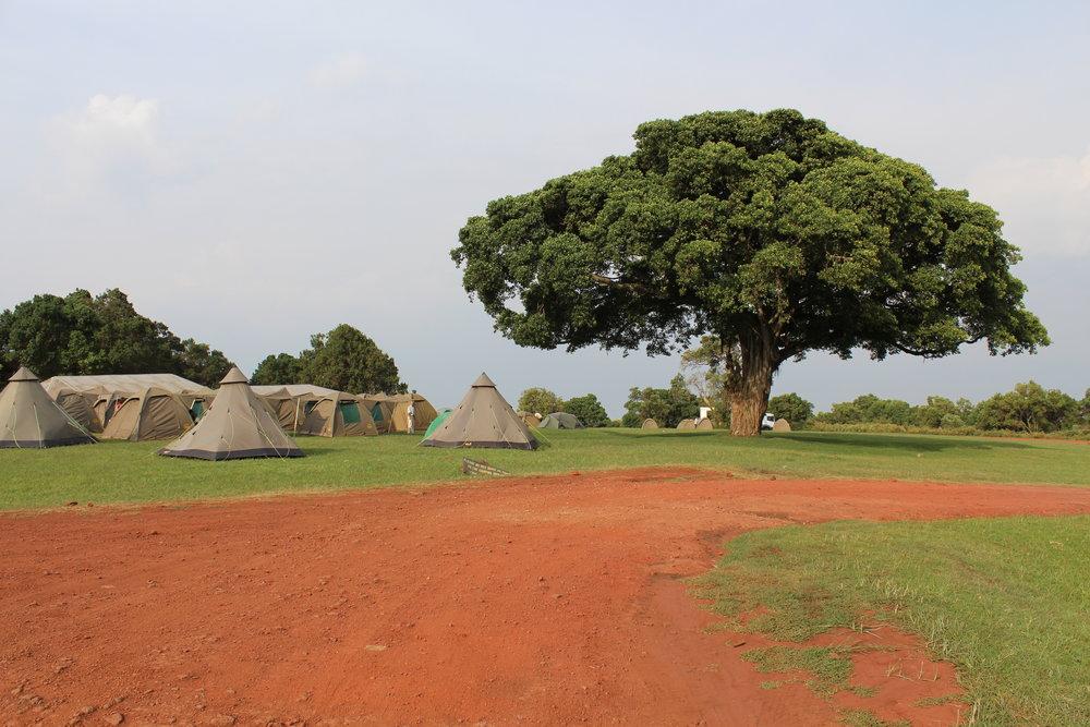 Simba Campsite