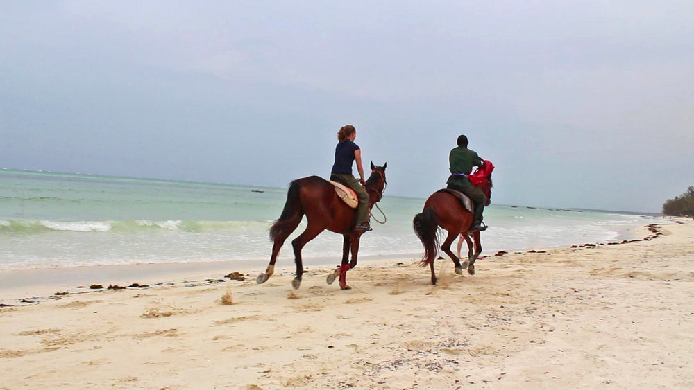 Horseback riding on the beach in Kiwengwa, Zanzibar