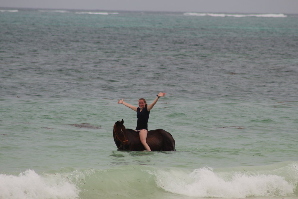 Horseback riding in the ocean in Kiwengwa, Zanzibar.