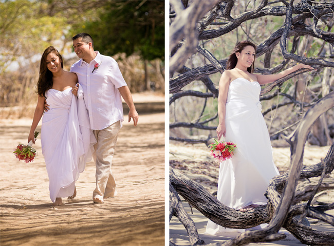 Guanacaste Tree Wedding Planner