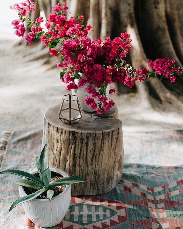 Potted altar design love 📷@costavidaphoto {rentals} @eventosartesanos #churdywedding #bohostyle #bohoinspo #weddinginspiration #tamarindo #costaricawedding #floraldesign