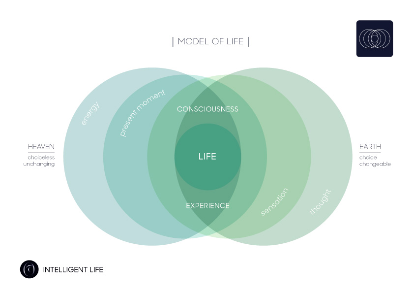 Model-of-Life-(colour).jpg