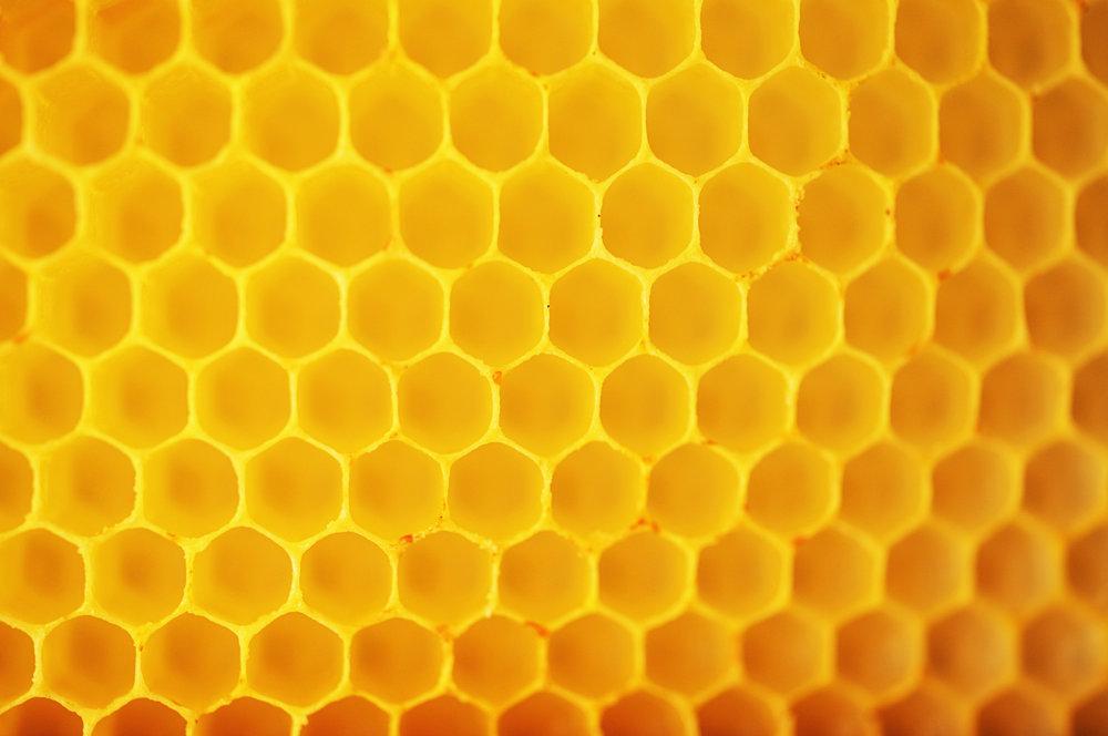 honeycomb - iStock-529116978 (1).jpg