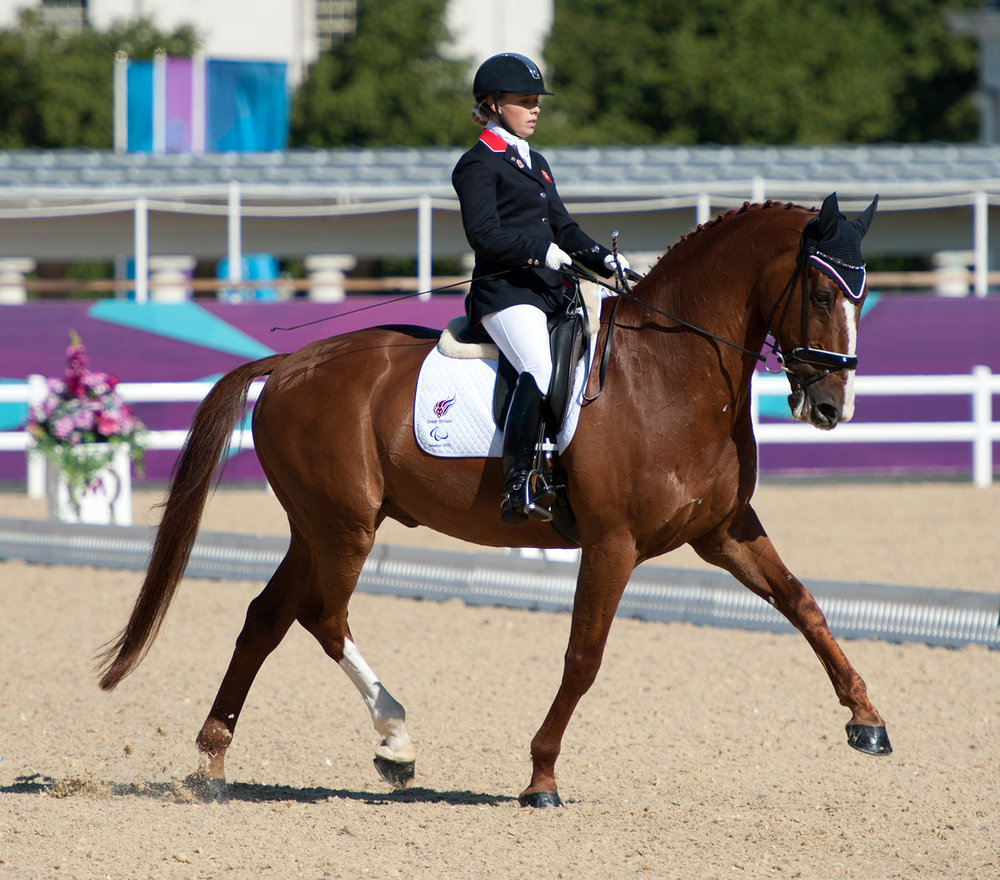 Sophie and Noki in the arena London 2012
