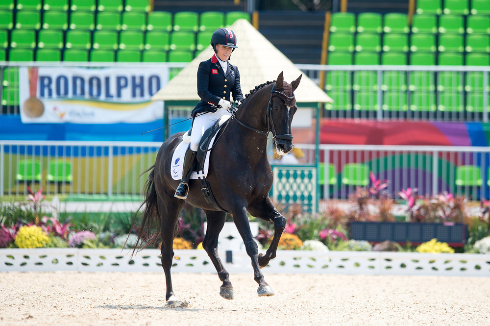 In the arena at Rio