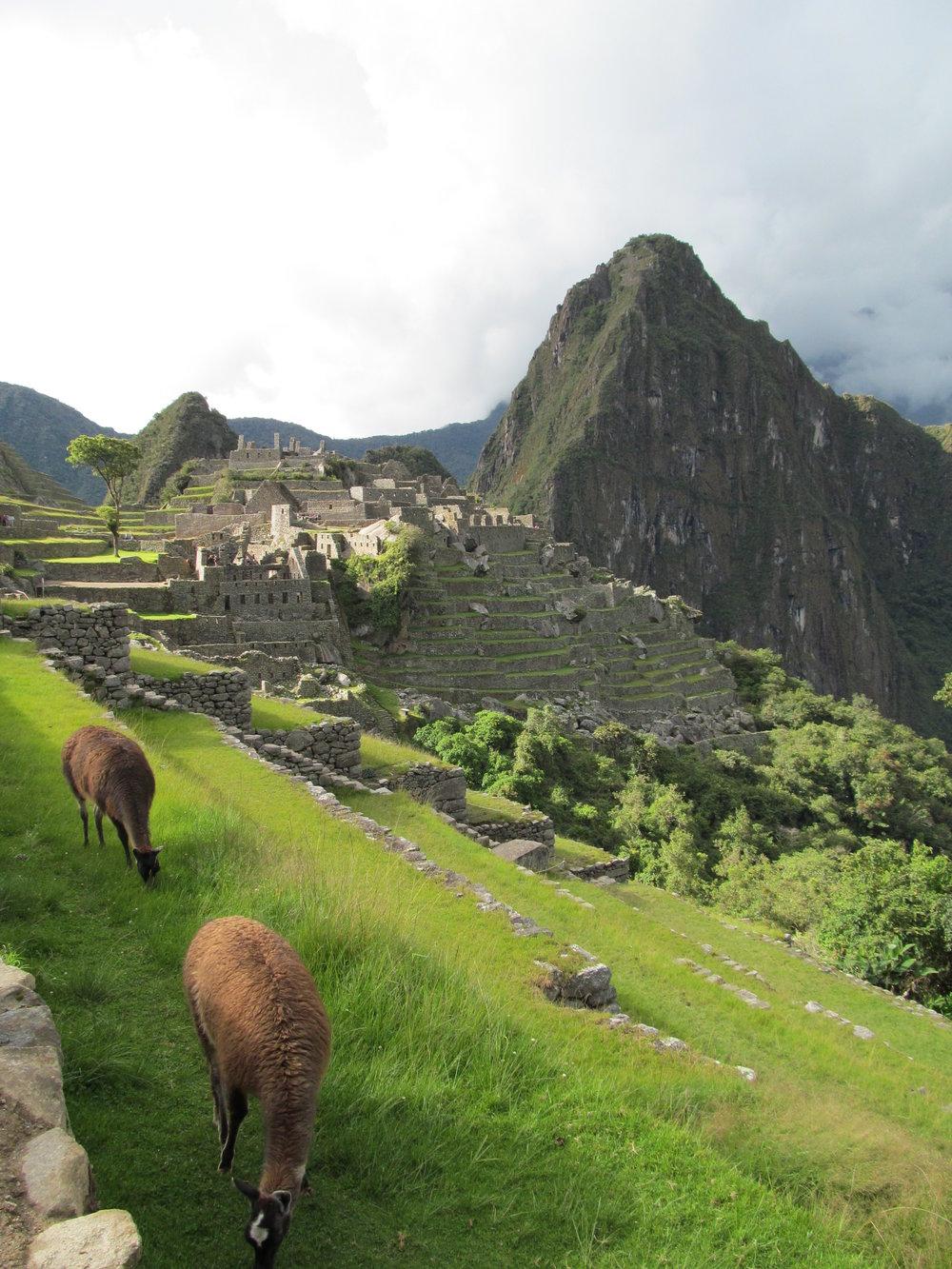 Peru Xmas 2011 620.JPG