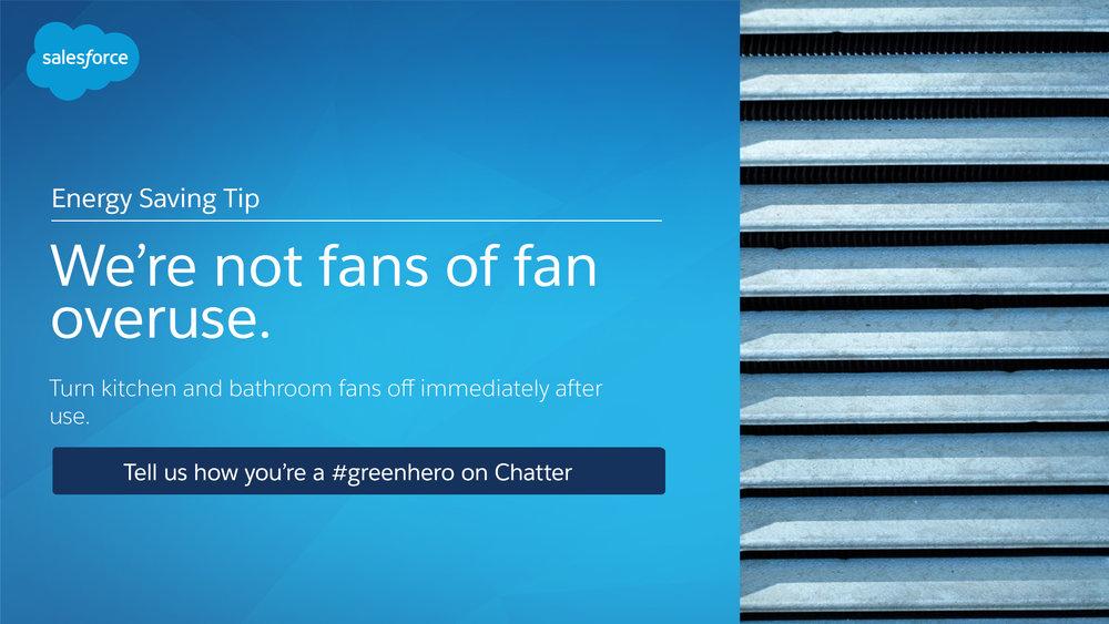 6 - Fans.jpg