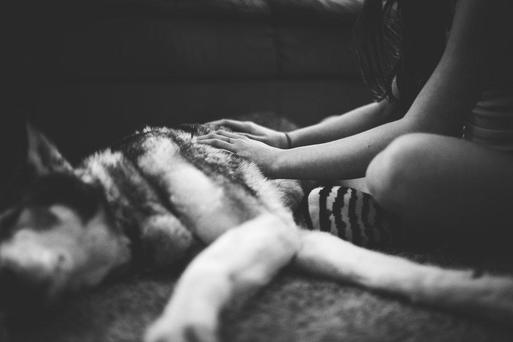last cuddles_-7.jpg