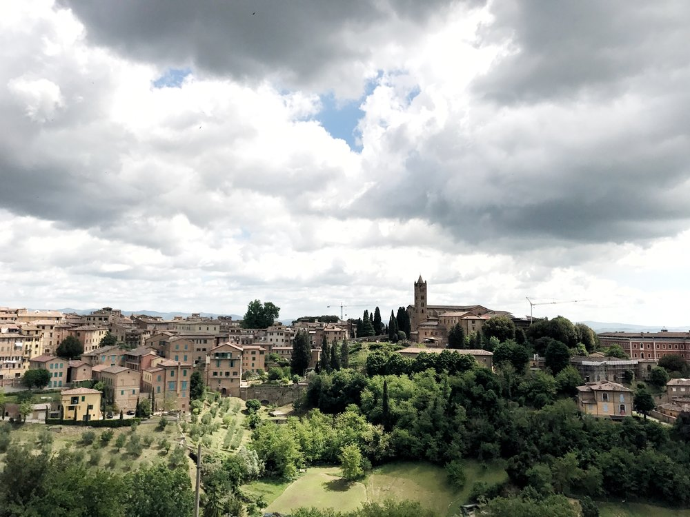 Panoramic view of Siena, Italy